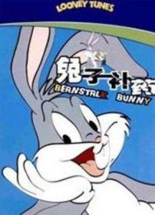 兔子补药-国