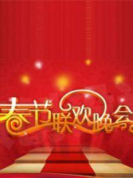 2015卫视春晚