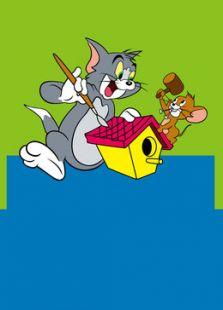 貓和老鼠潮汕版