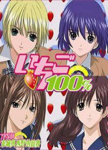 草莓100\% OVA