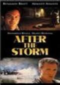 暴风雨过后 美国版