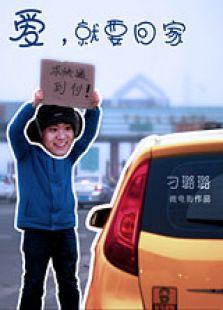 爱,就要回家(微电影) (2013)