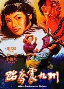 跆拳震九州