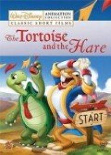 乌龟和兔子背景图