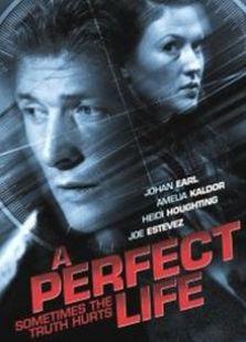 完美人生(2009)