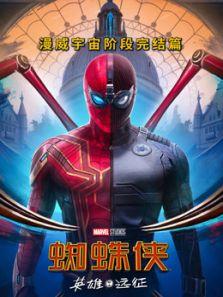 蜘蛛侠:英雄远征(普通话)