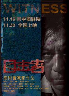 目击者[2012] (剧情片)