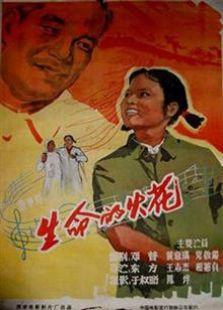 大圣文化(1962)