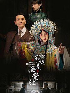 鬓边不是海棠红电视剧全集