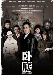 卧底(2015版)