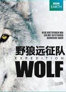 野狼远征队