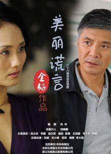 美丽谎言(2014)