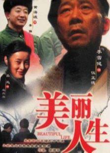 美丽人生(2008)(国产剧)