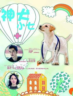 神犬小七第五季背景图