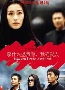 拿什么拯救你我的爱人(2002版)