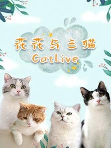 花花与三猫CatLive 2019