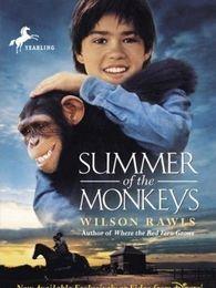 猴子的夏天