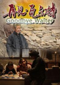 再见瓦尔特