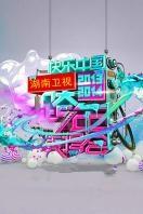 湖南衛視2013