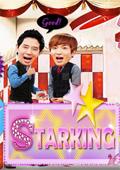 StarKing2011