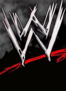 WWE美国职业摔角背景图